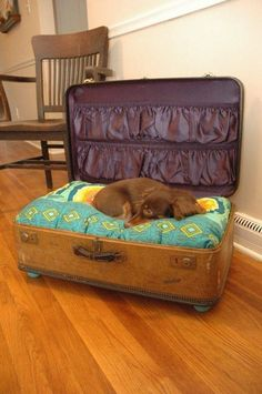 A great way to make a cozy dog bed by using an old suitcase! you could even store the dog toys in the pockets.  From Rescape.com
