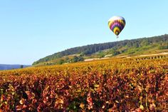 Optional hot-air ballooning is available on some cruises http://www.gobarging.com/