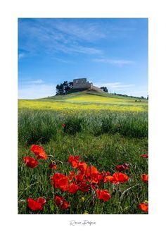 Castello svevo di Gravina in Puglia. Ph Rocco Pedone. Ph, Digital, Fotografia
