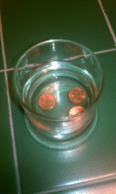 SHOO FLY SHOO!  Use this neat little no chemical trick to get rid of those annoying flies at picnics, crabfeasts, or even indoors.   - grab a glass cup or jar (must be clear glass) - fill halfway with water - drop in 3 or 4 pennies - place in middle of table or wherever the flies are. - and PRESTO, no more flies!