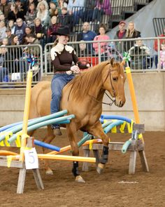 Exciting All Breed Challenge Competition tests horsemanship skill and includes all breeds of horse, all ages of riders and all disciplines of riding. Copyright Entirely Equine Marketing