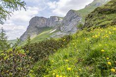 Geltenschuss | Berner Oberland | Gstaad
