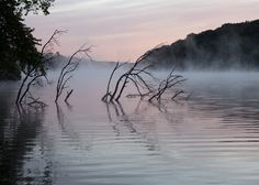 Pine Lake State Park, Hardin County, by Tom Wood. Send your contest entries to photos@dnr.iowa.gov!