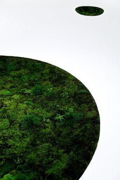 // Tokyo Fiber '09 Sensewa「Time Of Moss」by Azuma Makoto. Photography by Shiinoki Shunsuke