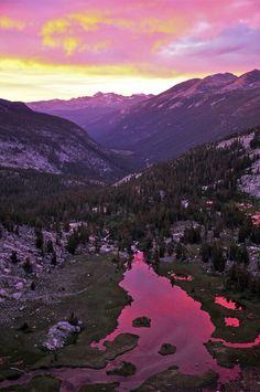 Photo Essay: Yosemite   Dyer & Jenkins