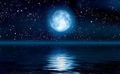 Tiago Amaral Letras : Noble Moon