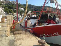 Javea Javea Spain, Sea Urchins, Outdoor Furniture, Outdoor Decor, Hammock, Container, Boat, World, Places