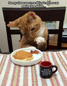 Eating breakfast…