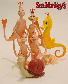 Sea-Monkeys - TOYS I DIDN'T GROW UP WITH! I was so disappointed that I couldn't get these wonderful creatures in England.