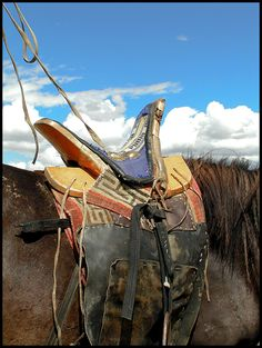 Horse Back Photo Mongolia / Paardenrug Foto Mongolië Tibet, Horse Gear, Horse Tack, Hema Martial Arts, Mounted Archery, Bactrian Camel, Horse Costumes, Horse Accessories, Back Photos