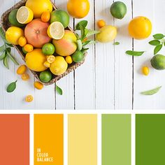 best images summer color palette tropical board recipe : What an incredible day! COLOURlovers color palette software is bringing you our best picks of color palettes which will take your breath away. Orange Color Palettes, Green Colour Palette, Green Colors, Tropical Colors, Mint Color, Colour Schemes, Color Combos, Aesthetic Colors, Summer Colors