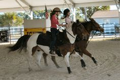 Horse Shows | Kubota Agriplex | South Florida Fair