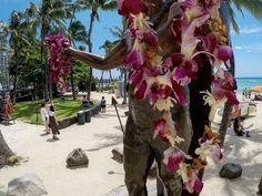 Hawaii Trip <3 #annadziubek #bydziubeka #bracelet #waikiki #beach #hot #summer #bydziubekaintravel #travel #jewellery #fashion #bijoux #ootd #like #love #aloha