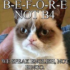 Do you love Grumpy cat. If you do, These Grumpy cat Memes work for you.These Grumpy cat Memes work are so funny and humor. Grumpy Cat Meme, Funny Cat Memes, Funny Cat Videos, Funny Cats, Hilarious, Grumpy Kitty, Funny Quotes, Cats Humor, Memes Humor