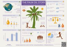 The Palm Oil Story // Infographic
