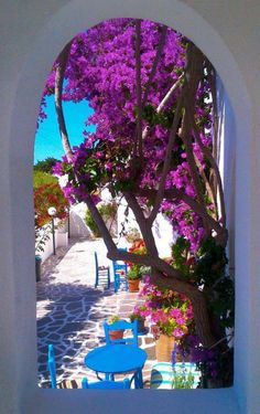 Bougainvillea in a cafe of Lefkes village, Paros island, Cyclades, Greece Bougainvillea, Mykonos, Beautiful World, Beautiful Places, Places To Travel, Places To Go, Paros Greece, Paros Island, Greece Travel