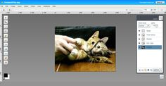 {Aviary's Image Editor} Powerful online photo editor with easy to use user interface. Perfect alternative for popular Adobe Photoshop.