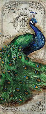 Tre Sorelle Studios: 'Colorful Peacock I'