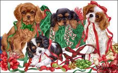 Cavalier King Charles Christmas cards are 8 x 5 and come in packages of 12 cards. One design per package. All designs include envelopes, your personal message, and choice of greeting. Christmas Animals, Christmas Dog, Vintage Christmas, Christmas Cards, King Charles Dog, King Charles Spaniel, Cavalier King Charles, Christmas Scenery, Christmas Pictures