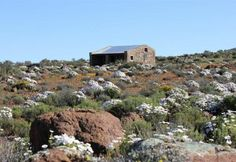 Saffraan accommodation near Sutherland, Northern Cape. A cozy little love nest in on a farm in the middle of star-lit Sutherland is what you'll find at Saffraan. Travel Info, Travel Bugs, Travel Ideas, Different Countries, Holiday Destinations, West Coast, South Africa, To Go, Cottage