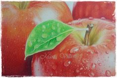 Maria Villioti - breaths of art: Drops on apples with colored pencils Portrait Sketches, Art Sketches, Pencil Art, Colored Pencils, Watermelon, Drop, Fruit, Drawings, Painting