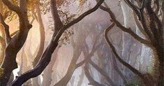 Just Pinned to Forests: As I followed the road through...