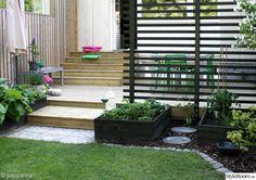 trädgård,altan