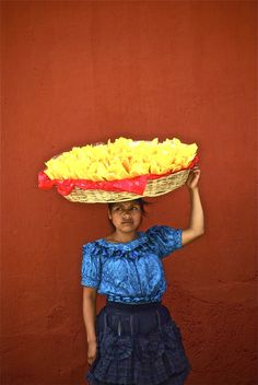 It's mango season in Mexico. [I would like this photo in my kitchen.]