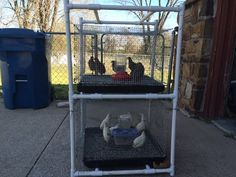 How to Make Stacking PVC Quail Cages - YouTube