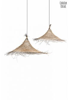 Date-Palm Suspension - Hanging Lamps - Light