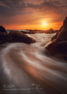 silk claws by Jhovany_Rosales. Please Like http://fb.me/go4photos and Follow @go4fotos Thank You. :-)