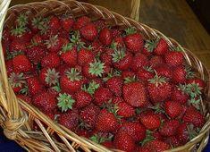 Фотография Strawberry, Fruit, Recipes, Food, Gardening, Garden Ideas, The Fruit, Strawberry Fruit, Rezepte