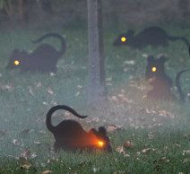 Mice - could do this with Dollar Store rats, a drill and glow sticks or a battery operated light.