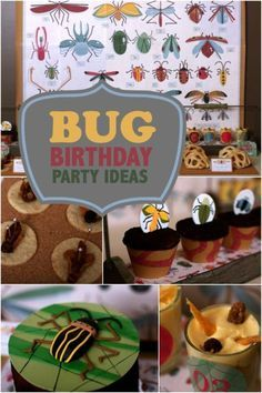 Bug Themed Birthday Party Ideas | eBay