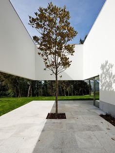 Eduardo Souto De Moura — House in Ponte de Lima — Image 6 of 35 — Europaconcorsi