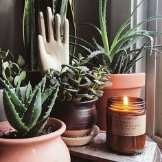 """The Cannabis reviews are coming in! Kate from our webshop says: """"Every new scent you release is even better than the last...the Cannabis candle is my favorite way to indulge. Thank you for outdoing yourself once again."""" Have you tried it yet?! : @jordoncloud #pfcandleco #cannabis"""