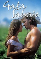 Novelas na Netflix | Filmes Netflix Uk Tv, Hollywood Cinema, Samara, Romances, Divas, Actors & Actresses, Movie Tv, Tv Series, Tv Shows