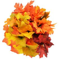 Floral Garden Oak & Maple Leaf Bushes, 14 in. Fake Flowers, Artificial Flowers, Dollar Tree Fall, Florist Supplies, Fall Diy, Carnations, Greenery, Fall Decor, Garland