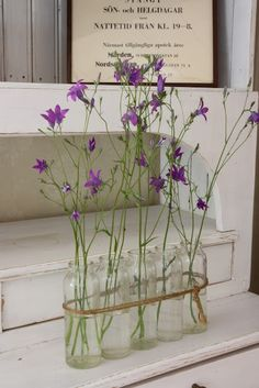 This is a great tip for having tall/high vases or jars with tall flowers on them. Sometimes the plants are so heavy from the top, that you would have to have a very heavy jar with em. So, have plenty, tie them together with a cute ribbon and vóila, it stays up without falling! ★ Grow Your Home Alive at YourFavouritePlace.com ★