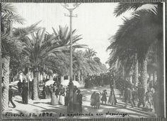 La Explanada en Domingo 1898- Archivo Ayuntamiento.  Colección: FRIAS