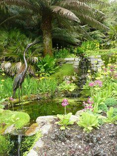 Trebah Gardens, Cornwall Reading At Home, Uk Holidays, Kingdom Of Great Britain, Water Gardens, Cornwall England, Formal Gardens, Private Garden, Number 3, British Isles