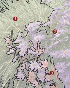 1. Japanese sedge (Carex morrowii cv.,  Z 5–9) 2. 'Mönch' aster (Aster X frikartii 'Mönch', Z 5–8) 3. 'Oregon Sunset' crimson flag (Schizostylis coccinea 'Oregon Sunset', Z 7–9)