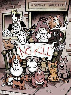 If only they all were no kill shelters.