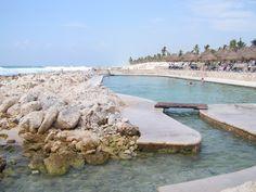 Tidal Pool Maya Riviera