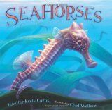 Seahorses by Jennifer Keats Curtis | Picture This! Teaching with Picture Books