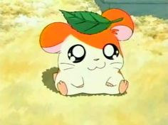 i used to be obsessed hamtaro Hamtaro, Anime Toon, Anime Comics, Manga Anime, Cartoon Tv, Cartoon Shows, Vintage Cartoon, Hamster Kawaii, Cute Icons