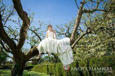 Bride up a tree