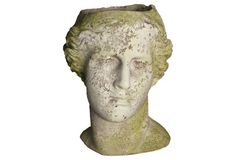 This planter is amazing! I feel like it's an adult chia pet. Just think of the funky hairdo you could give this man.