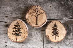 Trees Collection -  Woodland Nature Art  - Original Woodburning Art on  Birch Wood Rounds Wood Burning Crafts, Wood Slice Crafts, Wood Burning Art, Wood Burning Patterns, Wooden Crafts, Birch Tree Art, Wood Tree, Pine Tree, Wood Rounds