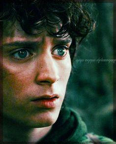 Frodo my everything <3